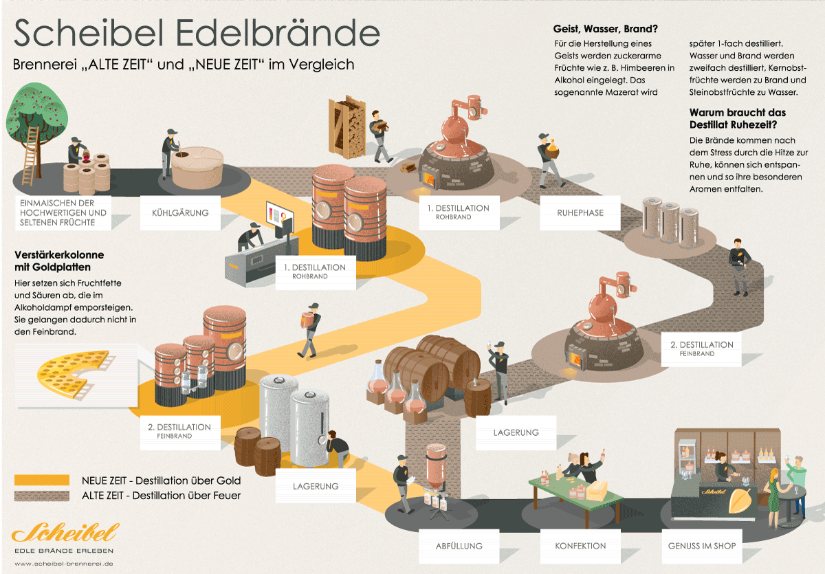 infographic about producing of brandies